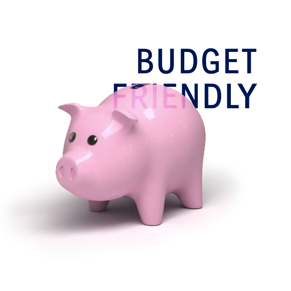 Budget Friendly Web Site Design Services